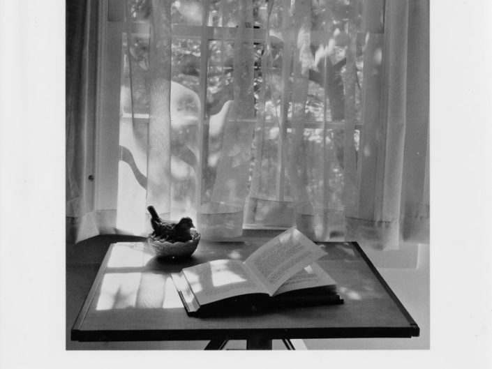 André Kertész: On Reading
